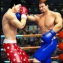 拳击明星赛