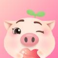 憨小猪app